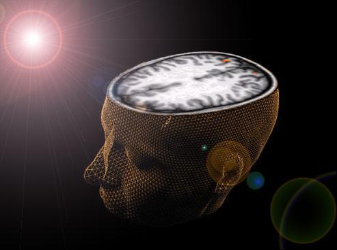 Notre mémoire est déjà sous l'influence d'Internet. Crédits photo : REUTERS/Ho New