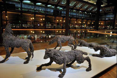 Une meute de cinq loups grandeur nature... en moutons de poussière. (La Meute/Galerie Patricia Dorfmann/MNHM)