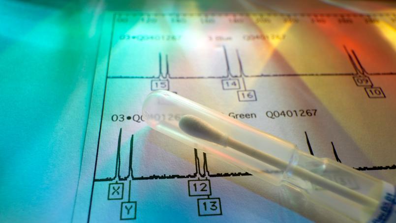 Des tests ADN pour retrouver ses ancêtres