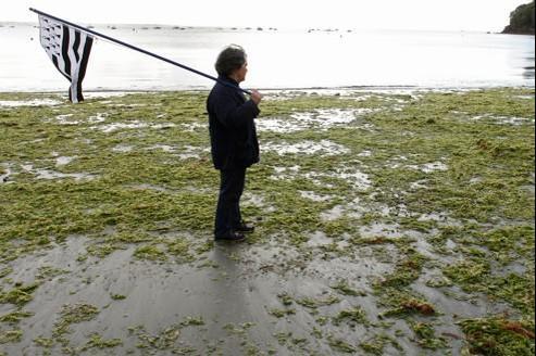 Un homme manifeste, en Bretagne, contre la prolifération des algues vertes (septembre 2011).
