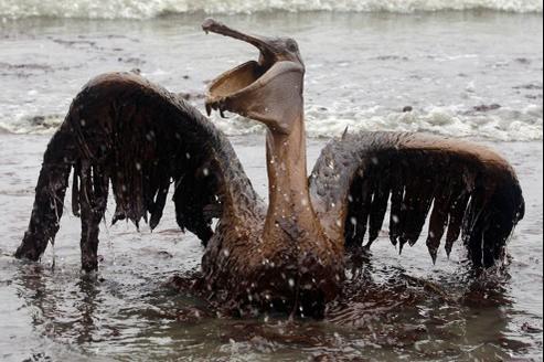 La plateforme Deepwater Horizon a explosé en 2010, provoquant la mort de 11 personne et causant des dégâts environnementaux sans précédents.