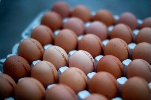 Aujourd'hui, les 100 œufs cotent 9,5 euros sur le marché spot (marché au jour le jour). Il y a un an, ils valaient 4,62 euros.