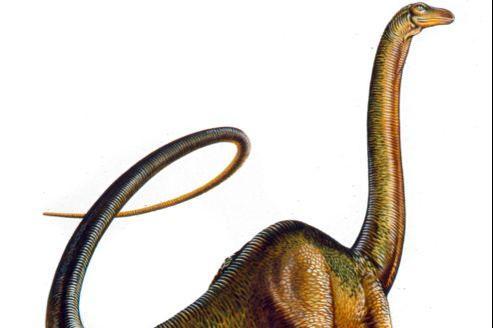 Les dinosaures produisaient cinq fois plus de méthane que nos ruminants actuels: vaches, chèvres et autres dromadaires…