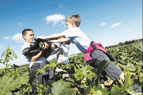 De nombreuses exploitations à une trentaine de kilomètres de Paris proposent des cueillettes de fruits et légumes en libre service, accessibles à toute la famille.