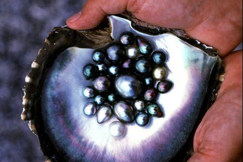 perle-noire-de-polynesie
