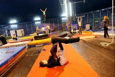 Le crique est largement subventionné. Le Centre national des arts du cirque à Châlons-en-Champagne, reçoit 7,1 millions d'euros de l'État.
