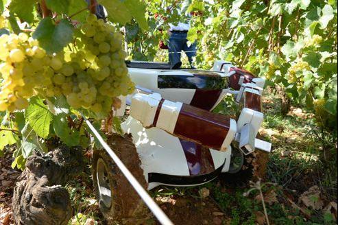 Le robot-vigneron VIN coûte 25.000 euros.