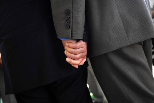 «Les possibilités d'adoption par des couples homosexuels seront très restreintes», affirme Geneviève Miral, ex-présidente d'Enfance et familles d'adoption.