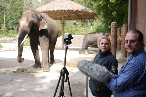 L'éléphant qui voulait parler comme un homme