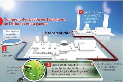 À la différence des biocarburants produits à partir de la canne à sucre, de la betterave ou du maïs, tels que le superéthanol E85, les carburants de synthèse mis au point par Joule ne requièrent ni terre arable ni eau potable pour être produits.
