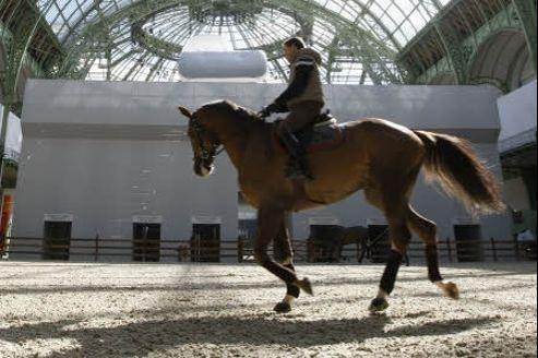 L'équitation pointe au troisième rang des sports pratiqués en France (700.000 salariés) mais, pour la première fois depuis vingt ans, le nombre de jeunes cavaliers a régressé. Crédit: Sébastien Soriano/Le Figaro