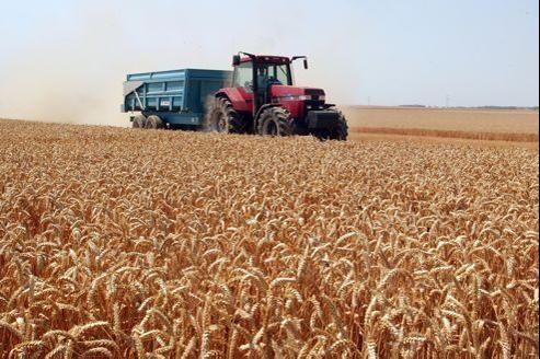 Les ventes de céréales affichent une hausse de 26%, à 14,9 milliards d'euros.