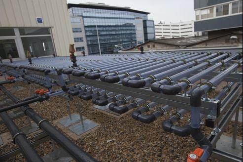 Les micro-algues, sur lesquelles travaille la start-up de haute technologie Ennesys, près de la Grande Arche, sont confinées dans des tubes en plastique.