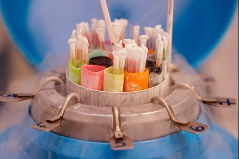Conservation des paillettes de spermatozoïdes et d'embryons congelés dans l'azote liquide, dans un laboratoire de PMA du CHU de Limoges.