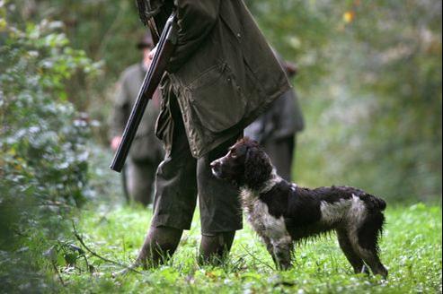 L'emploi de noms monosyllabiques - à consonance bien peu française - pour les chiens de chasse a profondément inquiété les «Amis de la langue française».