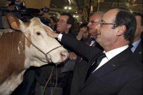 François Hollande est arrivé dès 7 heures au Salon de l'Agriculture.