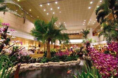 Jardin d'orchidées, bassin pour carpes , piscine, lumière naturelle, services luxueux: l'aéroport Changi de Singapour emporte tous les suffrages.