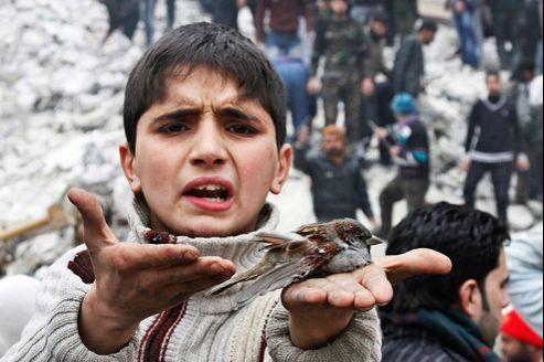 Un enfant syrien tient dans sa main un oiseau blessé par les bombardements, à Alep.