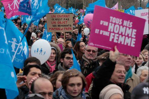 La Manif pour tous sur le Champ- de-Mars, à Paris, le 13 janvier 2013.
