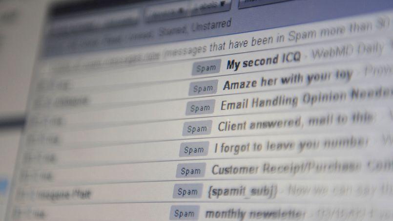 L'organisation Spamhaus, qui milite contre le spam, a été prise pour cible.