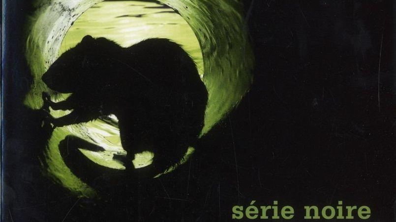 Polars : Quinze romans pour frissonner tout l'été