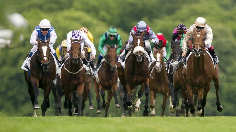 Il fallait débourser 5000euros pour acquérir une part du cheval de course.