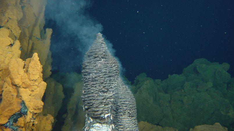 La vie a pu apparaître dans les sources hydrothermalessous-marines commece «fumeur» photographiépar l'Ifremer, lors de la campagne océanographique Exomar sur la dorsale atlantique.