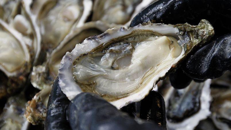 Une huître du bassin d'Arcachon fraîchement ouverte.