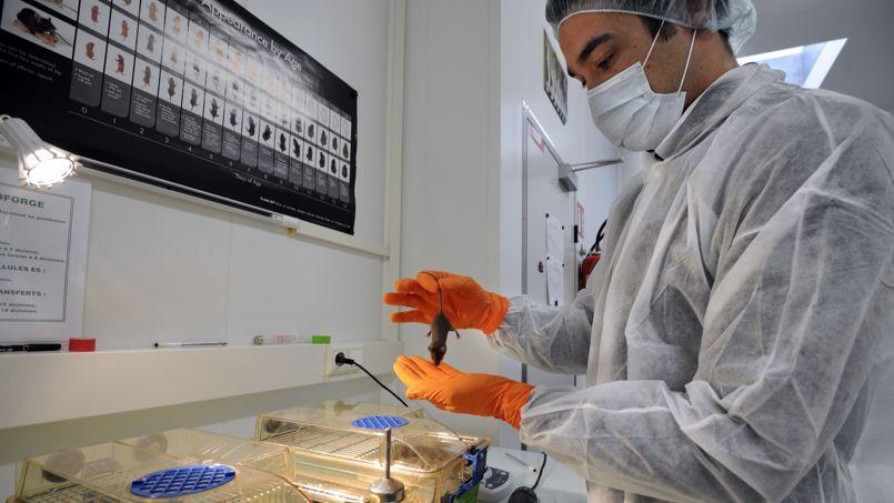 Un chercheur du CNRS, l'un des centres de recherche les plus innovants, selon Thomson Reuters.