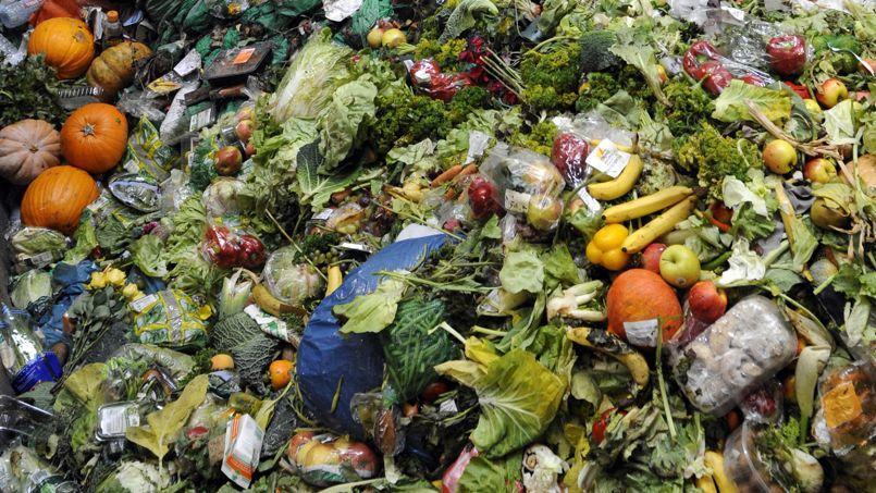 En France, l'Agence de l'environnement et de la maîtrise de l'énergie, établit la quantité d'aliments non-consommés et jetés à plus de 20 kg par personne et par an, c'est à dire 1,2 million de tonnes