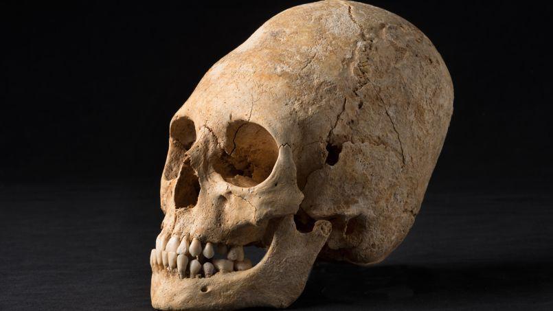 En Alsace, des archéologues sur les traces des barbares