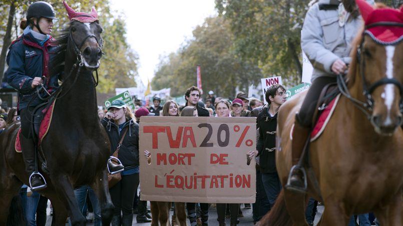 Manifestation contre l'équitaxe, le 11 novembre 2013 à Paris.