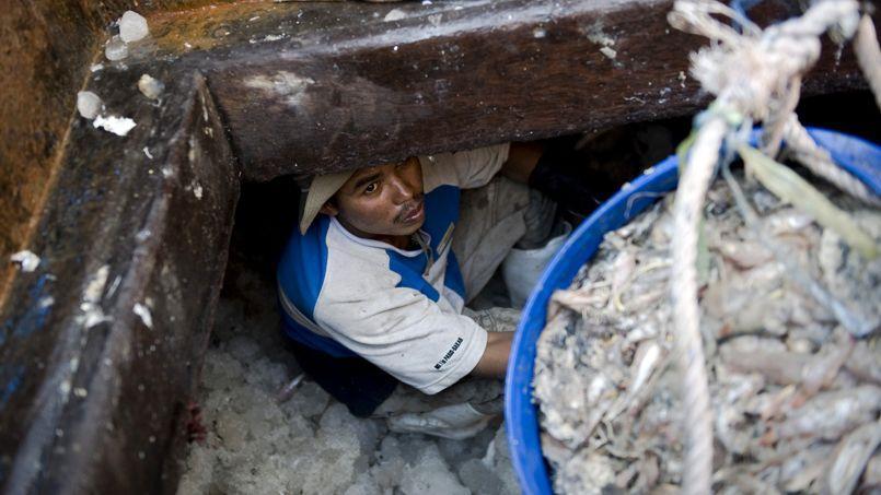 Un migrant cambodgien travaille sur un bateau de pêche, en 2010.