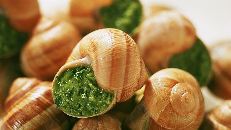 Vers une p nurie d 39 escargots de bourgogne no l - Cuisiner les escargots de bourgogne ...