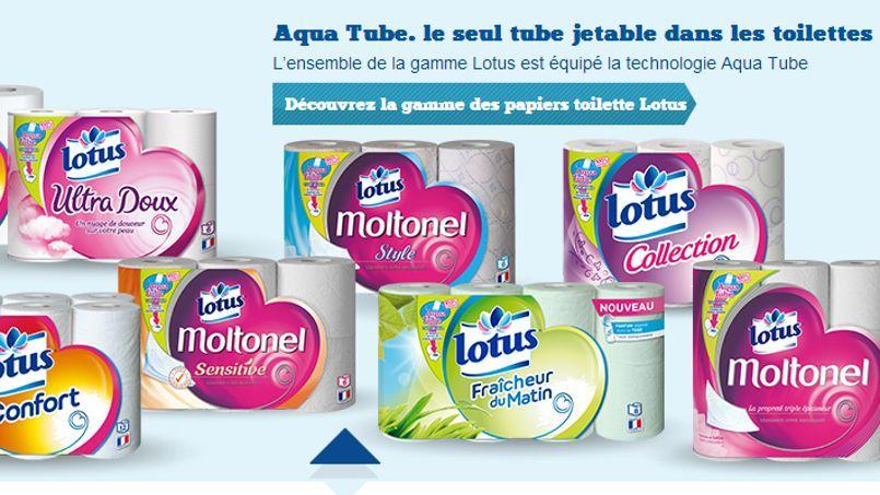 L'Aqua Tube de Lotus causerait des problèmes sur le réseau d'assainissement, selon la Mairie de Paris. Crédits photo: DR
