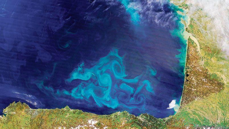 Photo satellite de la côte ouest de la France où l'on peut observer des formes claires dessinées par du phytoplancton.