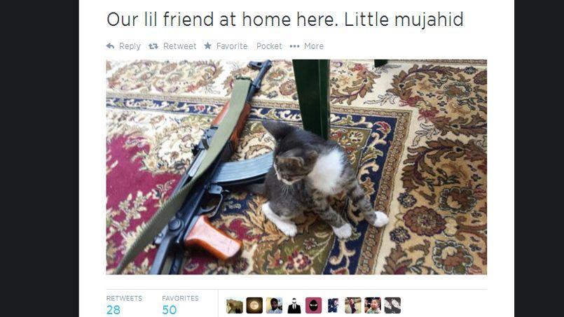 Capture d'écran d'une photo postée par un homme affirmant se battre en Syrie.