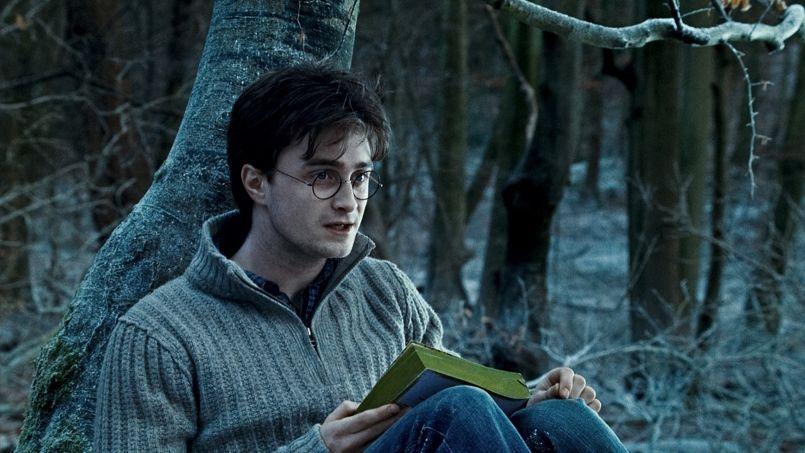 À travers le palmarès, on observe surtout l'âge moyen des grands utilisateurs de Facebook: la série des Harry Potter s'affirme comme le livre qui a le plus changé la vie des lecteurs.