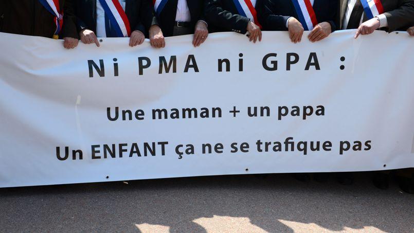 Manifestation anti-PMA, à Lyon, en mai 2013.