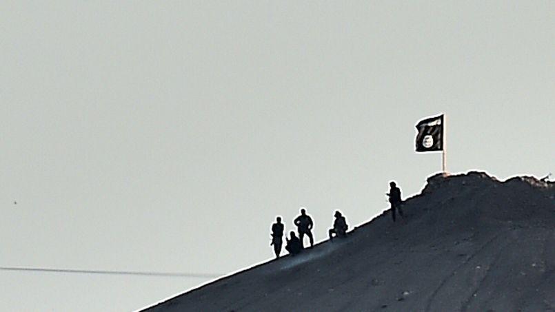 Des djihadistes de l'État islamique posent à côté d'un drapeau de l'organisation terroriste planté sur une colline de Kobané, ou Aïn al-Arab en Syrie.