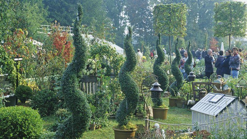 Journ es de courson aux arbres citoyens - Fete des plantes chantilly ...
