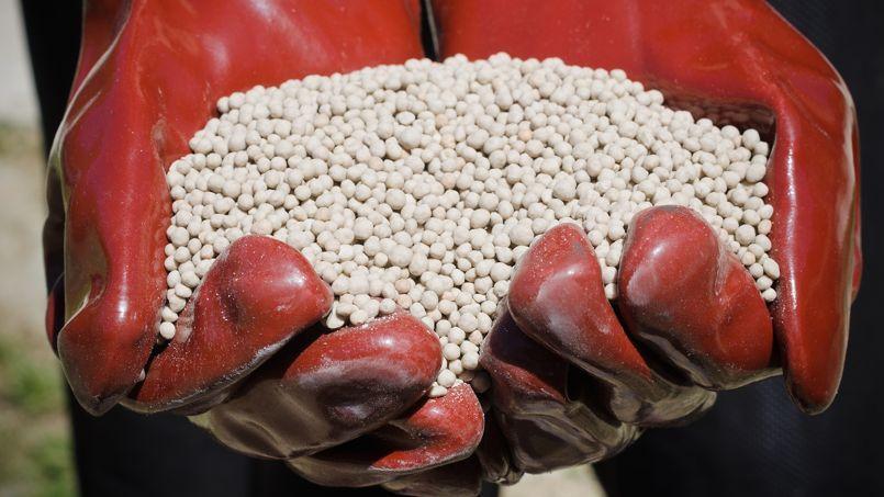 Jardin: les engrais chimiques sont-ils indispensables?