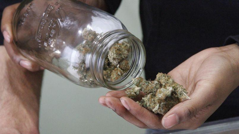 Pour les «simples» fumeurs de ganja, les parlementaires ont prévu d'autoriser la possession de 57 grammes de marijuana, et de cultiver jusqu'à cinq plants de cannabis