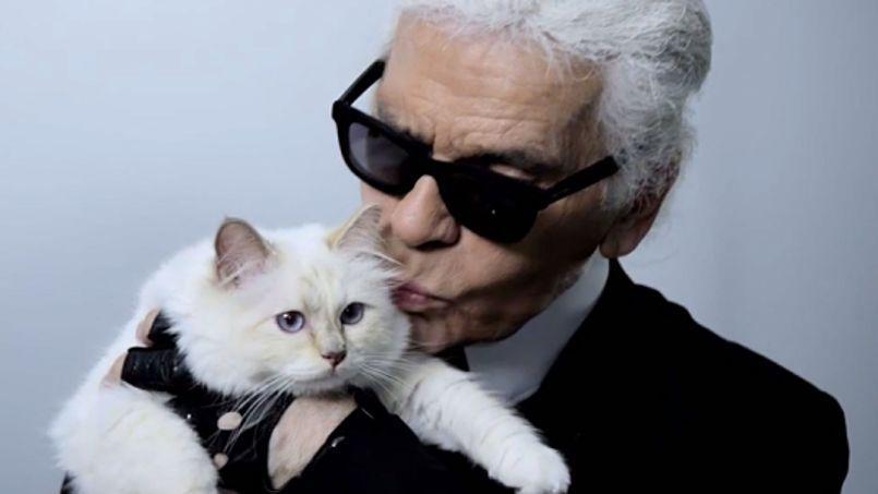 Karl Lagerfeld lui a récemment dédié un livre, Choupette, la vie enchantée d'un chat fashion, publié chez Flammarion. Une véritable ode à l'amour dont le couturier s'amuse, la comparant même à l'infante d'Espagne.