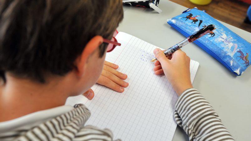 Ce nouveau rapport consacré aux dispositifs mis en place pour répondre à l'hétérogénéité des besoins des élèves fait le constat d'une organisation du système éducatif «qui ne permet pas d'atteindre les objectifs qui lui sont fixés».