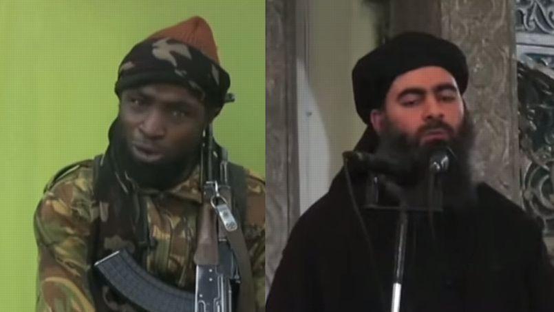 «Le ralliement de Boko Haram est une victoire stratégique de Daech sur al-Qaïda»
