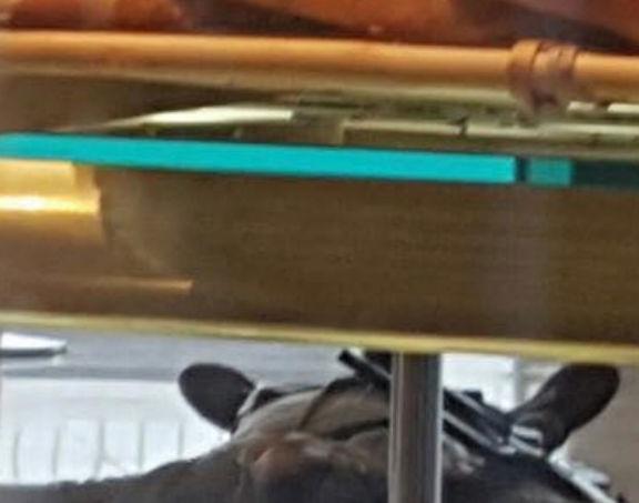 Fusillade à l'aéroport d'Orly : Ce qui s'est réellement passé
