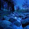 La source de la Breg (source officielle du Danube) dans le massif de la Forêt-Noire près de Furtwangen, village de la Forêt-Noire.