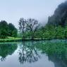 En aval de Mühlheim, le Danube adopte l'allure majestueuse qui convient aux grands fleuves.