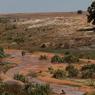 Tamisage des graviers dans les dépôts alluvionnaires de la rivière.